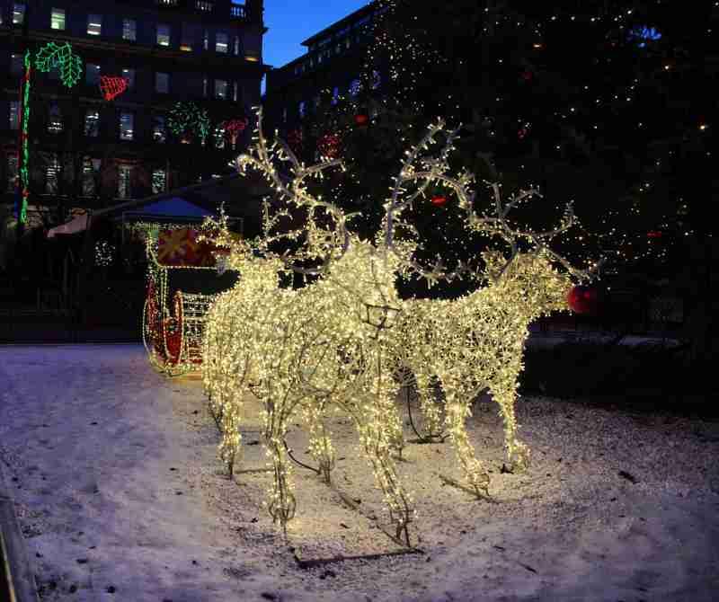 Rampant Scotland Christmas Lights Glasgow 2012