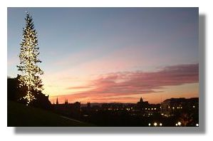 Edinburgh Christmas Tree