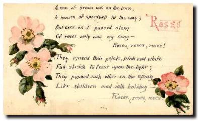 scottish poetry selection roses