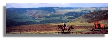 Horse Riding in the Borders